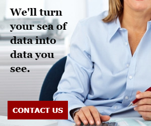 We'll turn your sea of data into data you see.