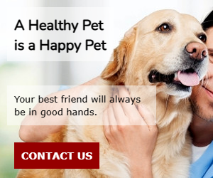 A Healthy Pet is a A Happy Pet
