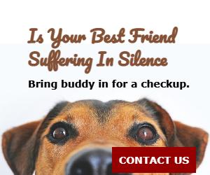 Is Your Best Friend Suffering In Silence