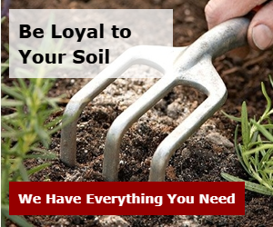 Be Loyal to Your Soil