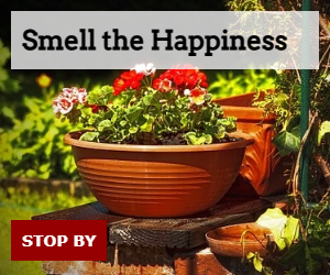 Smell the Happiness