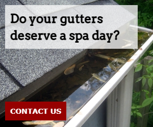 Do your gutters deserve a spa day?