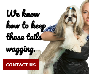 We know how to keep tails wagging.