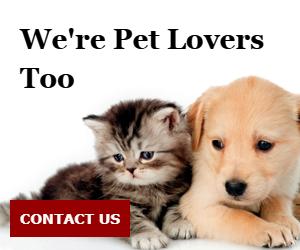 We're Pet Lovers Too
