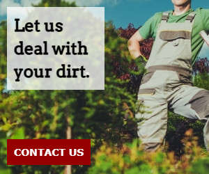 Let us deal with your dirt