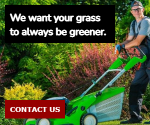 We want your grass to always be greener.