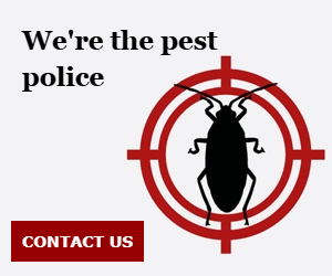 We're the pest police