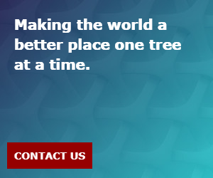 Making the world a better place one tree at a time.